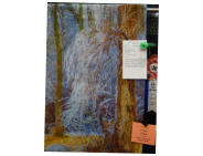 Art 1st: Icy Willows by Elaine Ross
